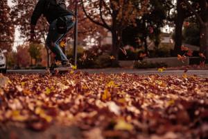 Sonbahar ve Kaykaycı