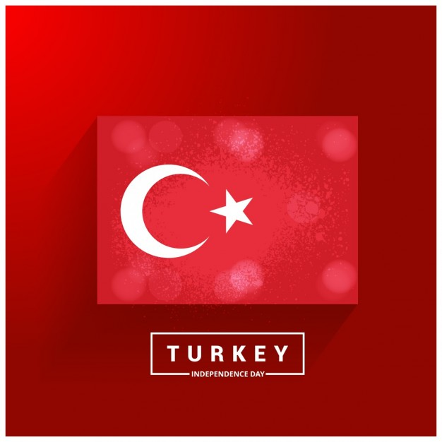 Vektörel Flat Türk Bayrağı