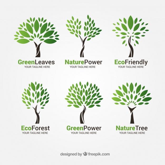 Vektörel Ağaç Logo Tasarımı