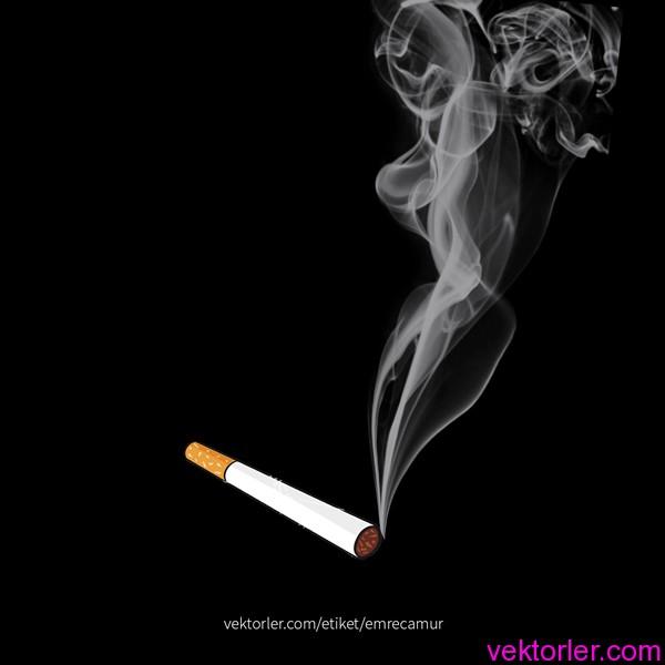PSD Sigara ve Duman