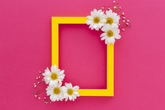onizleme-75241-yellow-frame-decorated-with-white-daisy-baby-s-breath-flowers-pink-surface_23-2148076484