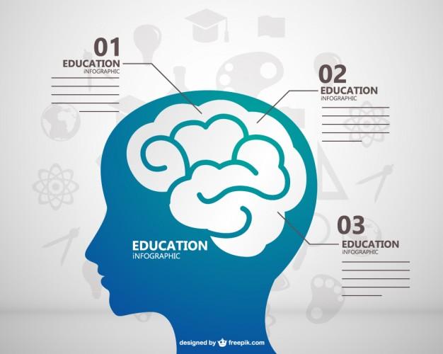 Vektörel İnfografik Beyin ve Eğitim