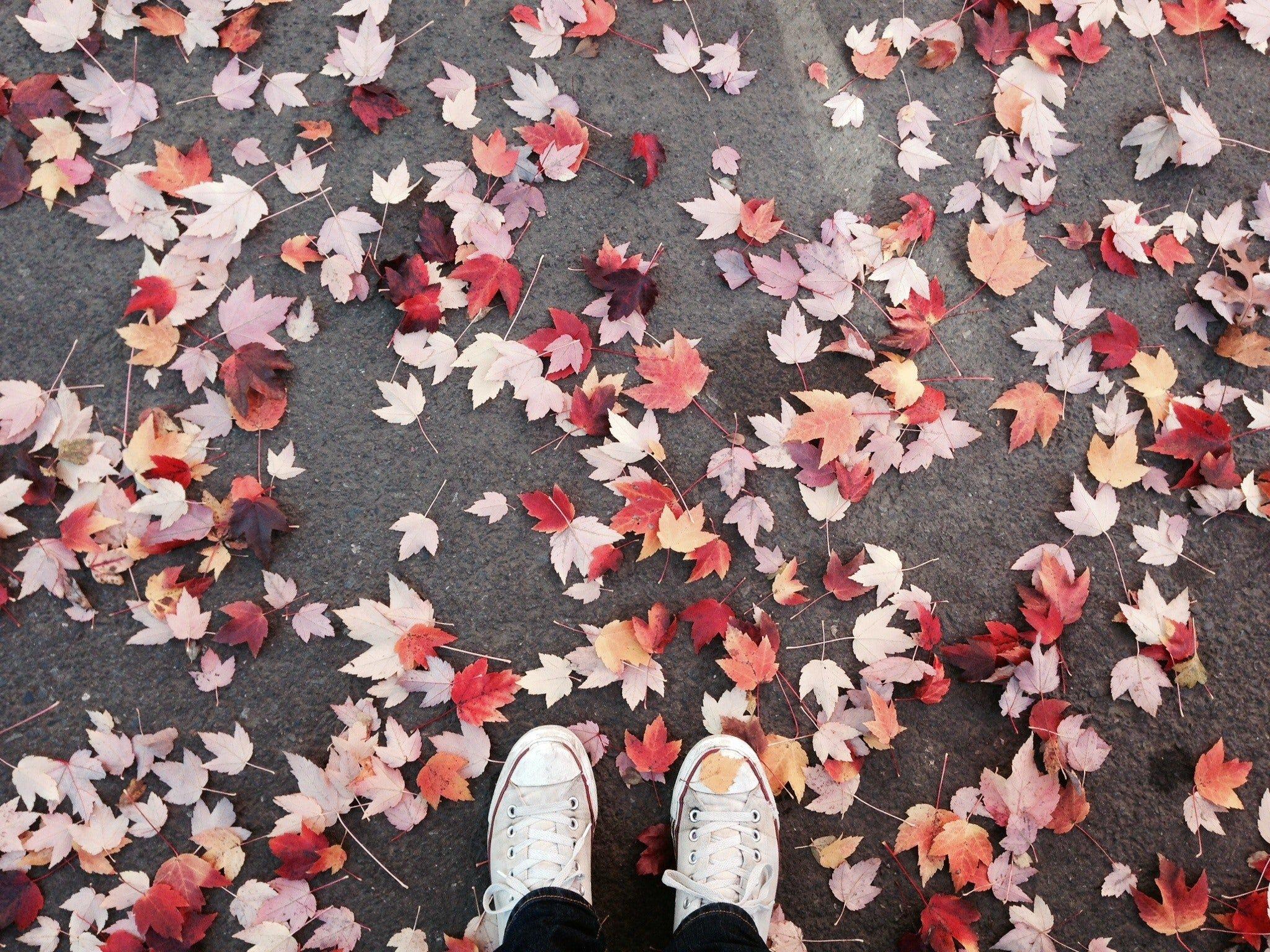 Sonbahar ve Ayakkabılar